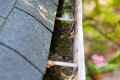 lynchburg gutter cleaning services